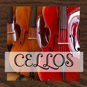 ESTUCHES DE CELLO